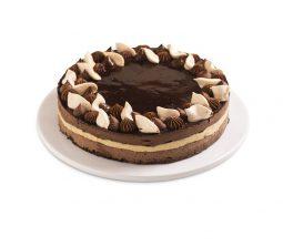 עוגת נוצ'ולטו טבעוני פרווה